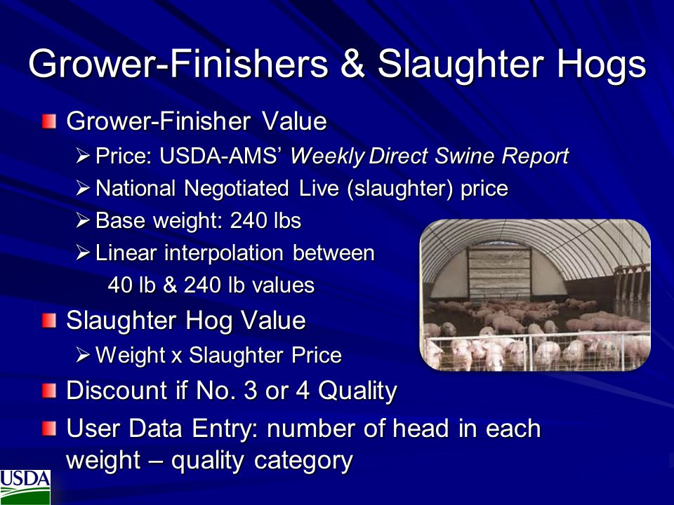 Grower-Finishers & Slaughter Hogs