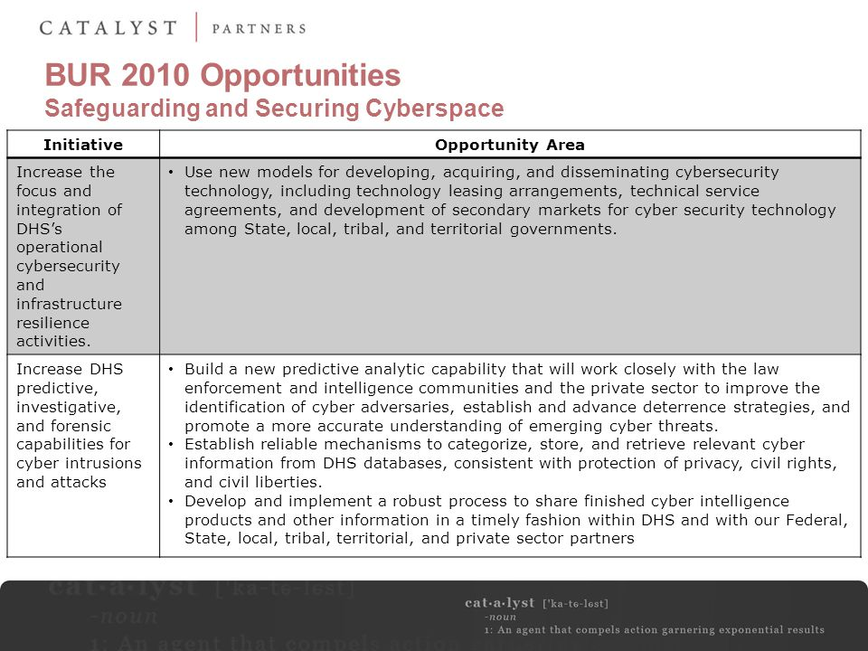 BUR 2010 Opportunities Safeguarding and Securing Cyberspace