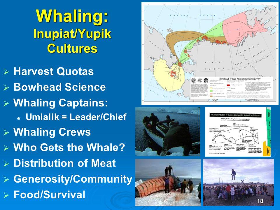 Whaling: Inupiat/Yupik Cultures