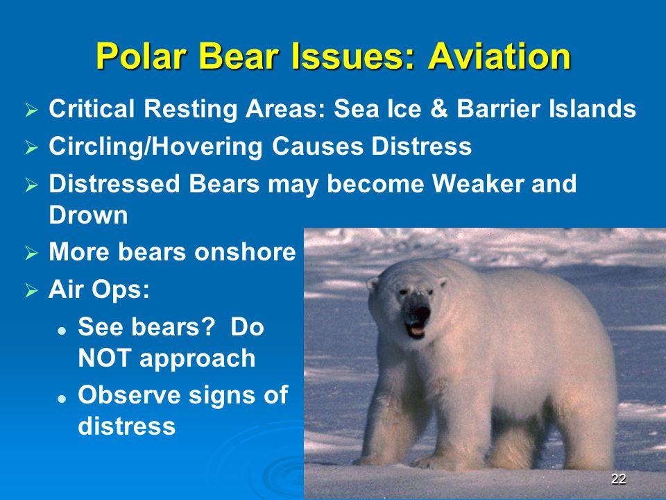 Polar Bear Issues: Aviation