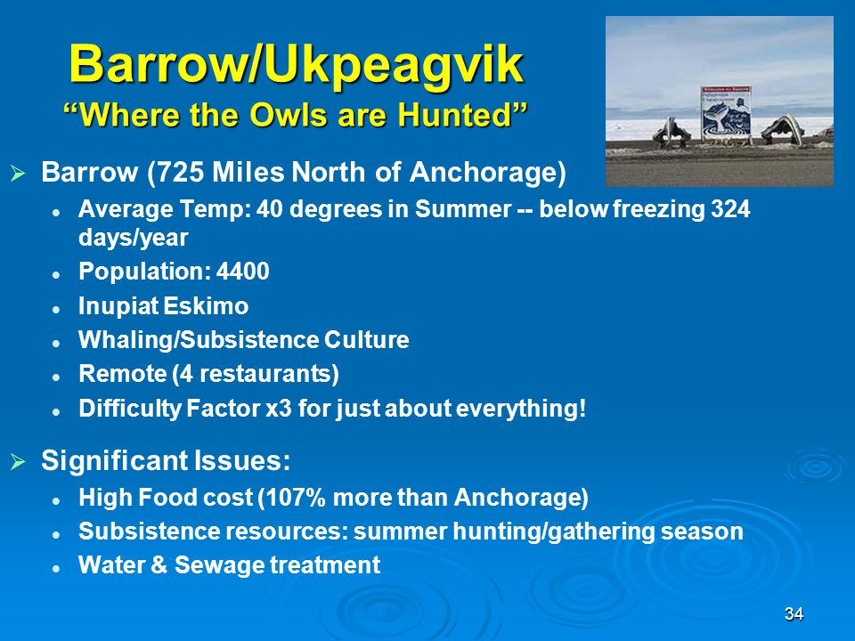 Barrow/Ukpeagvik Where the Owls are Hunted