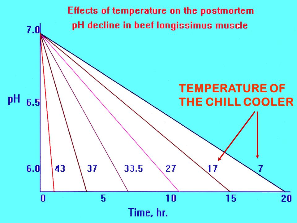 TEMPERATURE OF THE CHILL COOLER