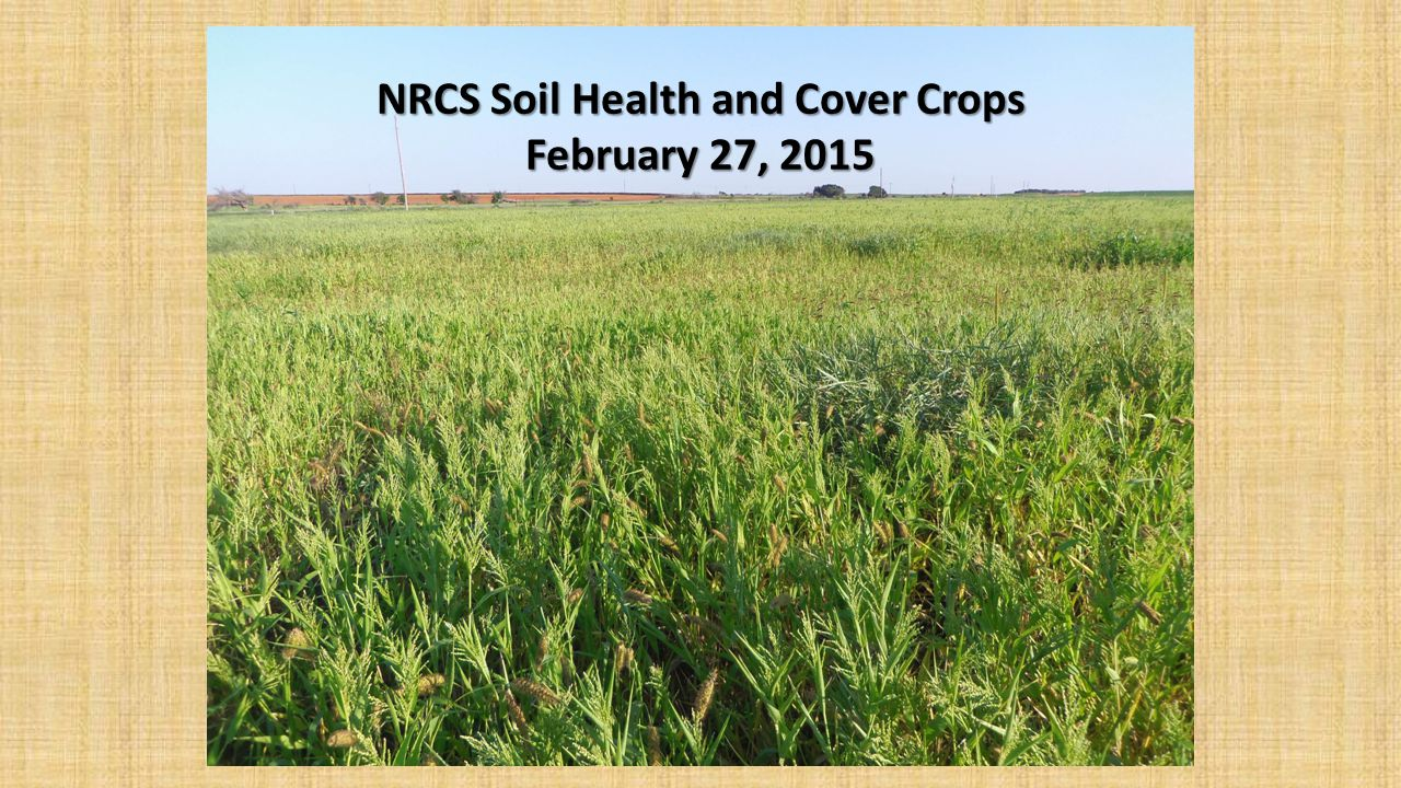 NRCS Soil Health and Cover Crops February 27, 2015