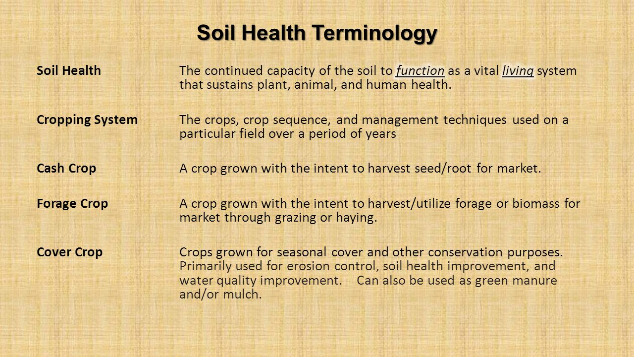 Soil Health Terminology