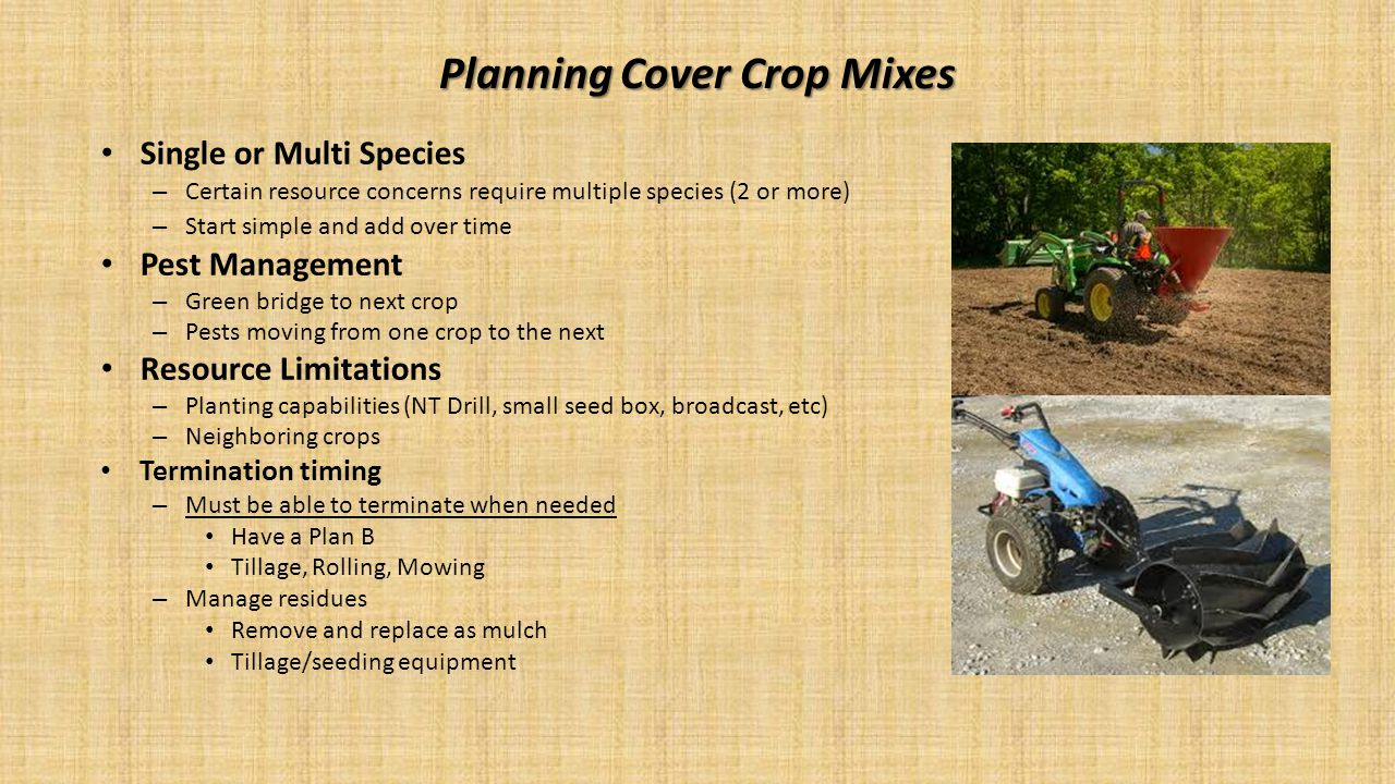 Planning Cover Crop Mixes