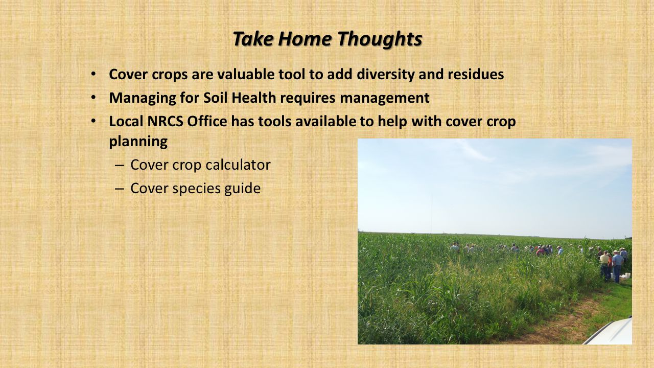 Take Home Thoughts Cover crops are valuable tool to add diversity and residues. Managing for Soil Health requires management.