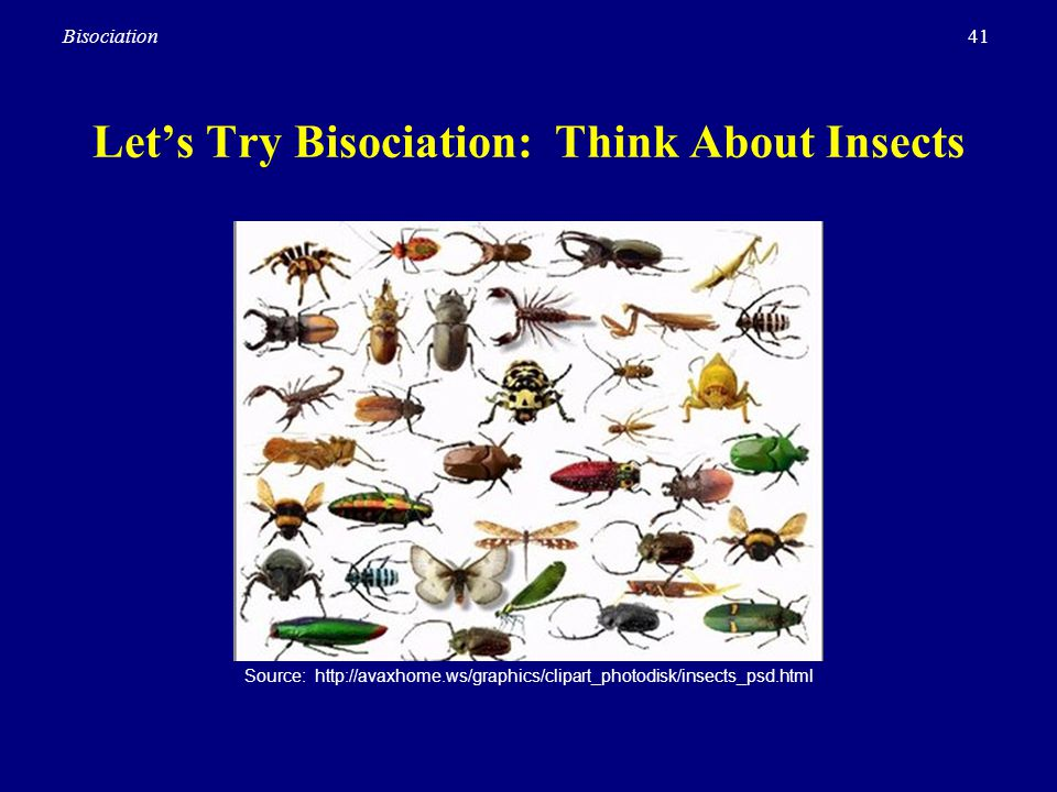 Let's Try Bisociation: Think About Insects