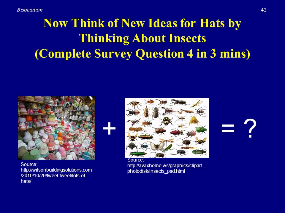 Now Think of New Ideas for Hats by Thinking About Insects (Complete Survey Question 4 in 3 mins)