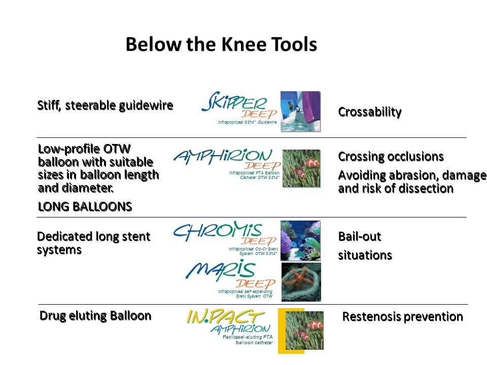 Below the Knee Tools Stiff, steerable guidewire Crossability