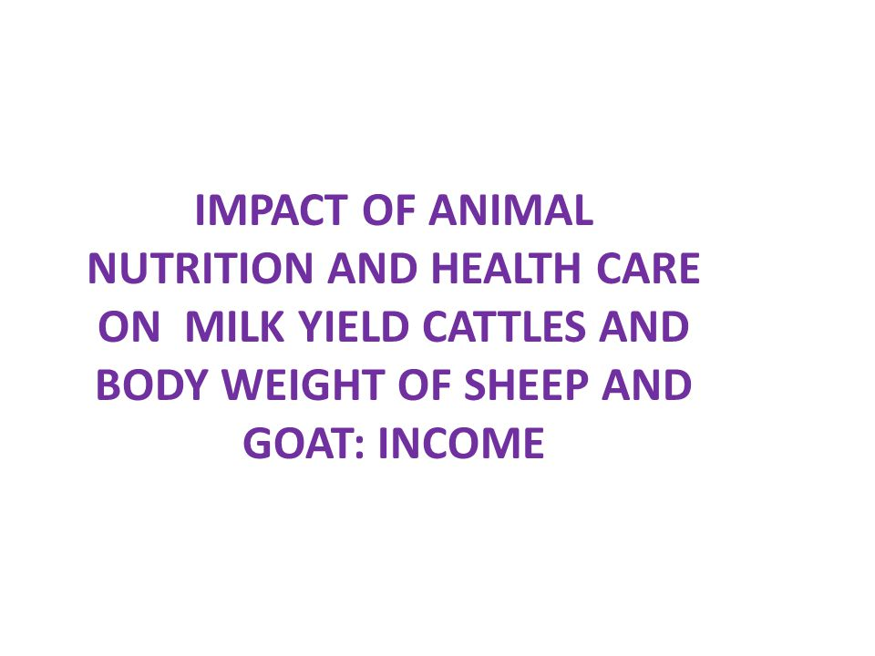 IMPACT OF ANIMAL NUTRITION AND HEALTH CARE ON MILK YIELD CATTLES AND BODY WEIGHT OF SHEEP AND GOAT: INCOME