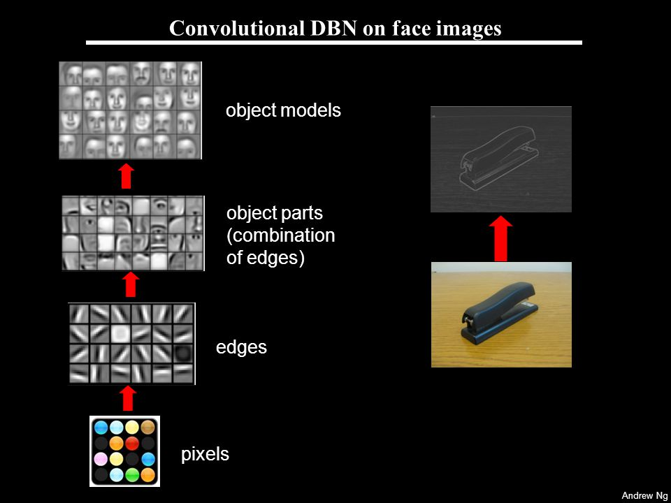 Convolutional DBN on face images