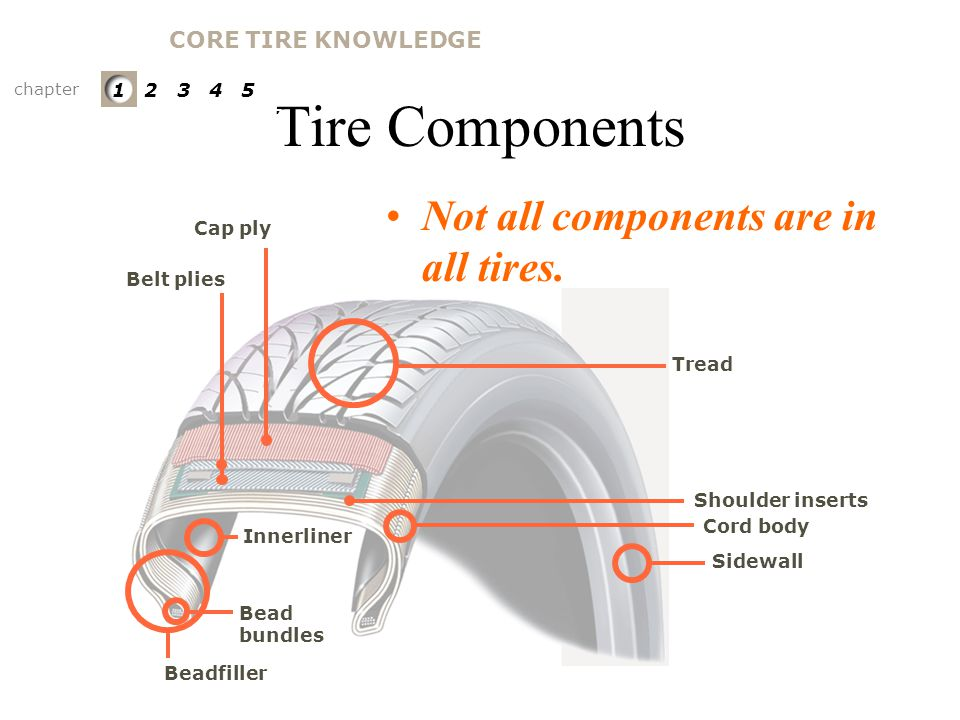 Tire Components Not all components are in all tires.