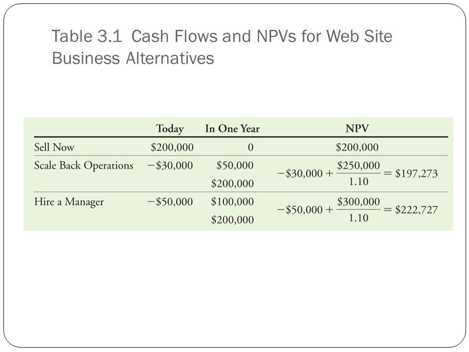 Table 3.1 Cash Flows and NPVs for Web Site Business Alternatives