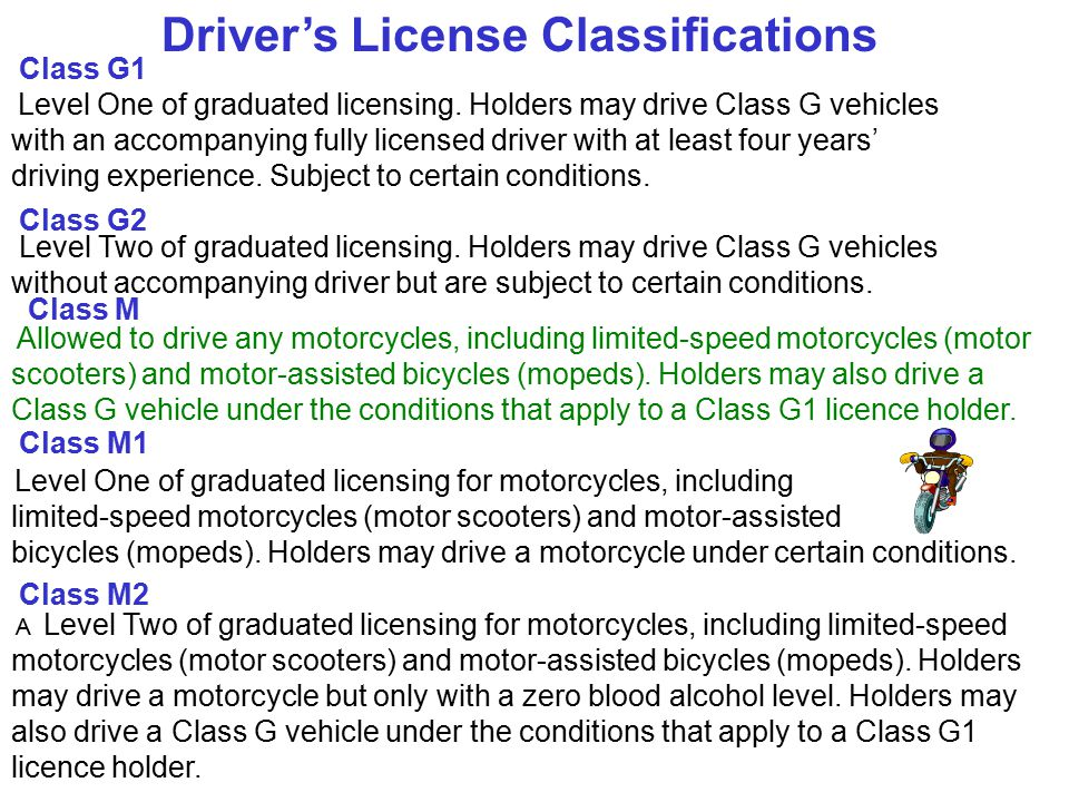 Driver's License Classifications