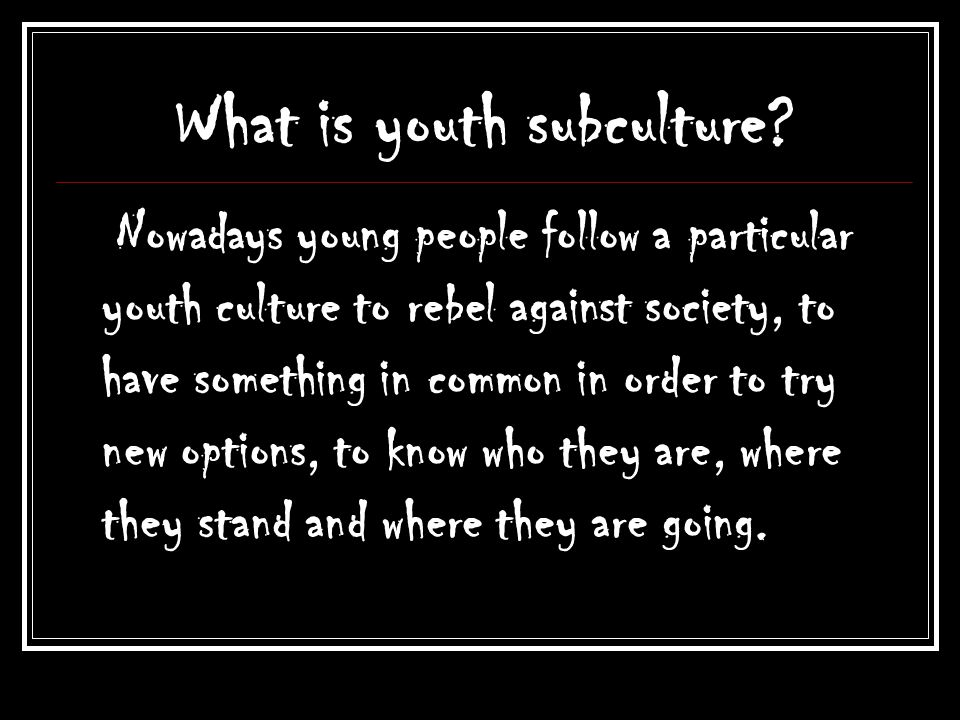 What is youth subculture