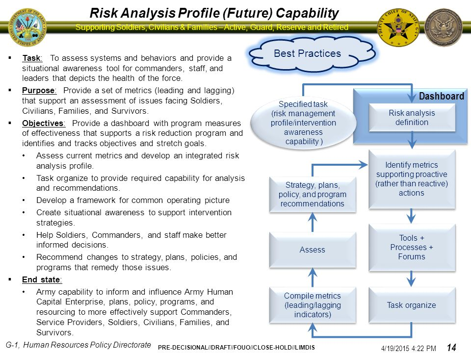 Risk Analysis Profile (Future) Capability