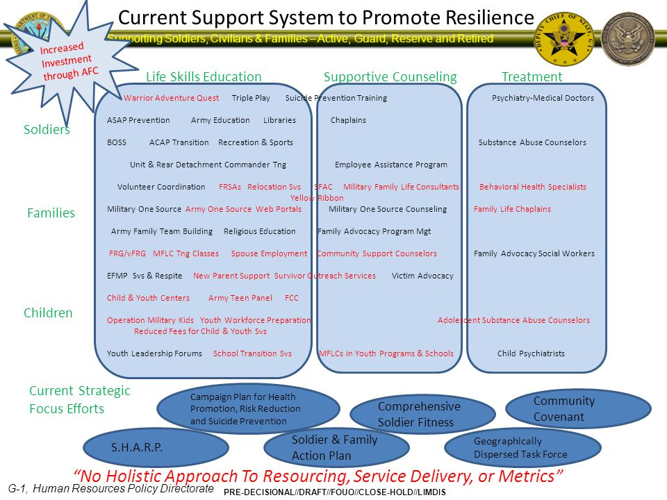 Current Support System to Promote Resilience