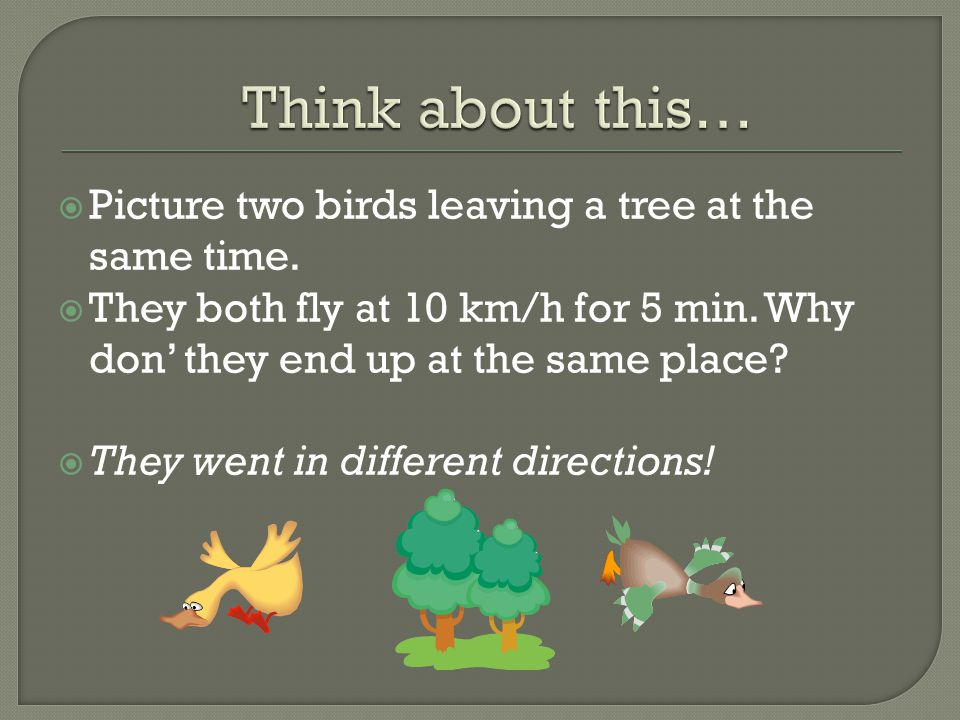 Think about this… Picture two birds leaving a tree at the same time.