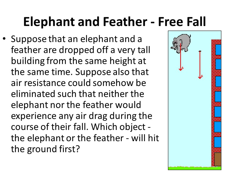 Elephant and Feather - Free Fall