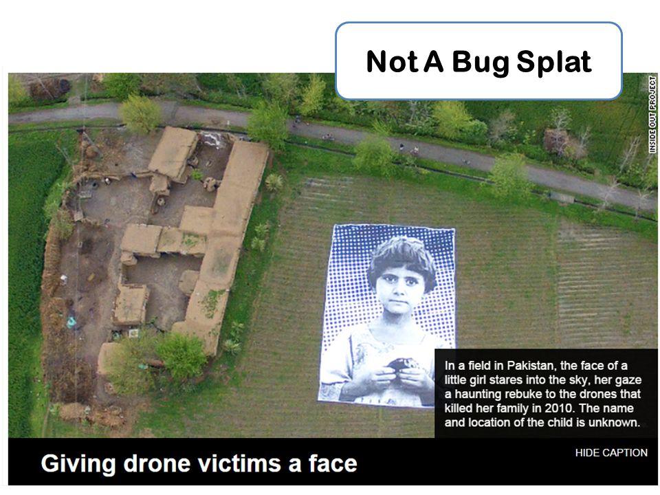 Not A Bug Splat