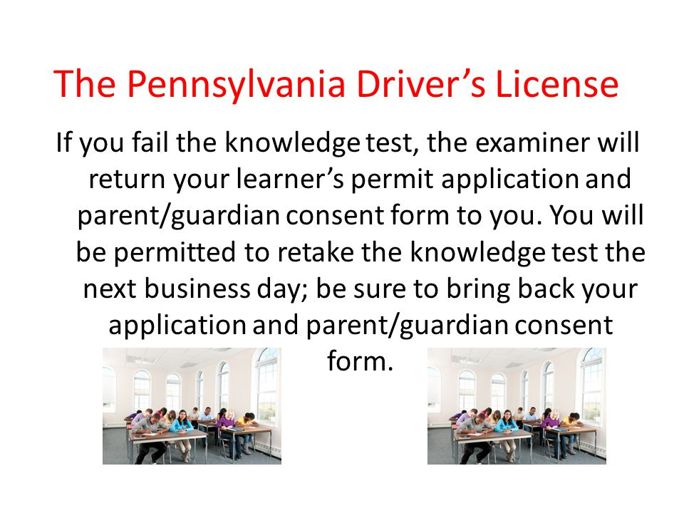 The Pennsylvania Driver's License - ppt download
