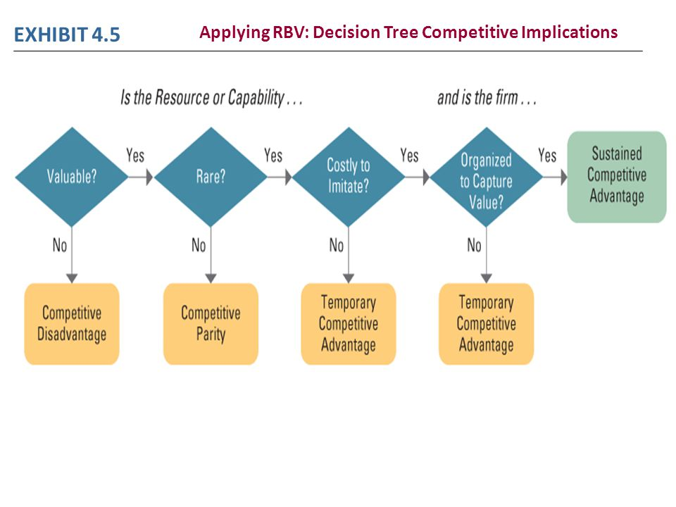 Applying RBV: Decision Tree Competitive Implications
