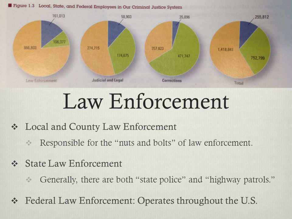 Law Enforcement Local and County Law Enforcement State Law Enforcement