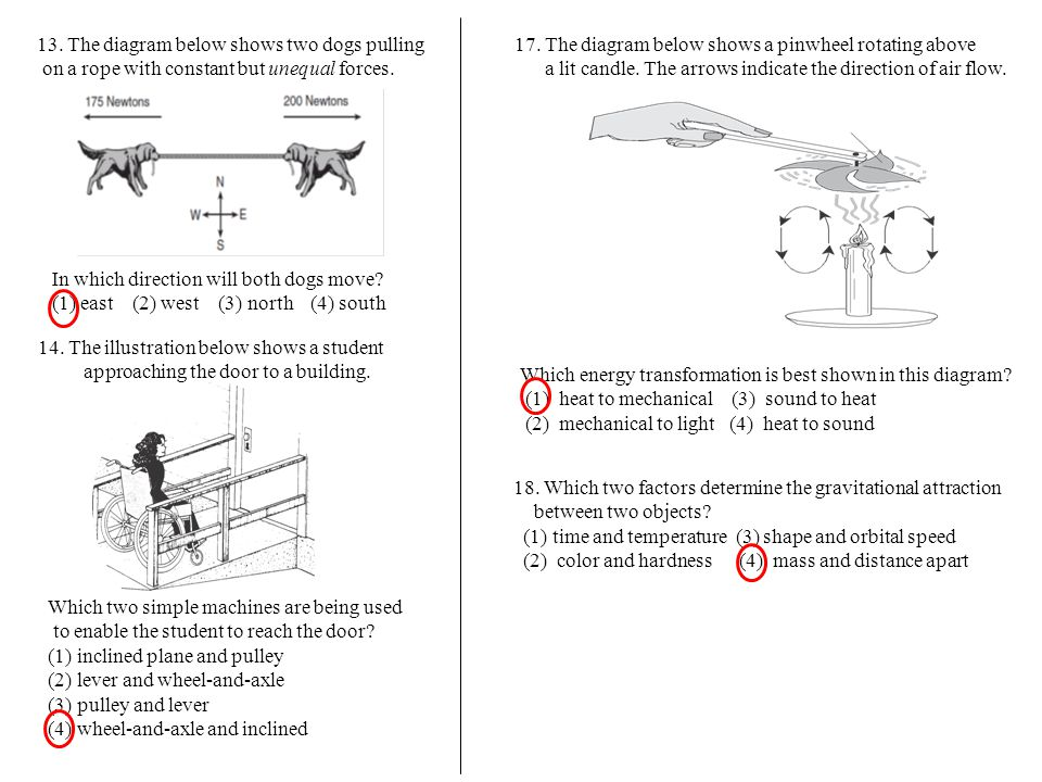 13. The diagram below shows two dogs pulling