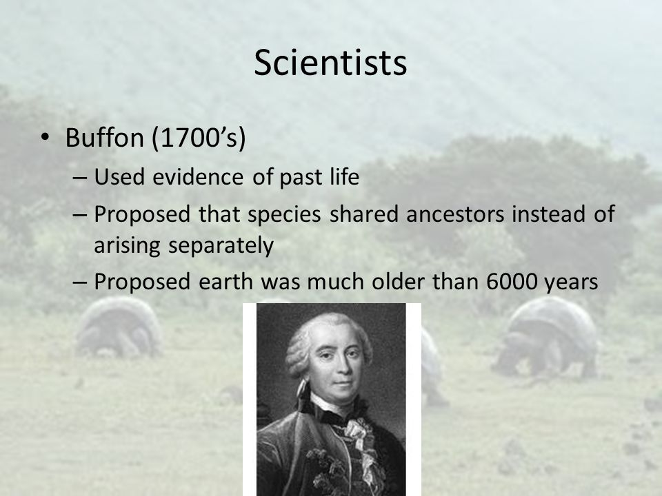 Scientists Buffon (1700's) Used evidence of past life