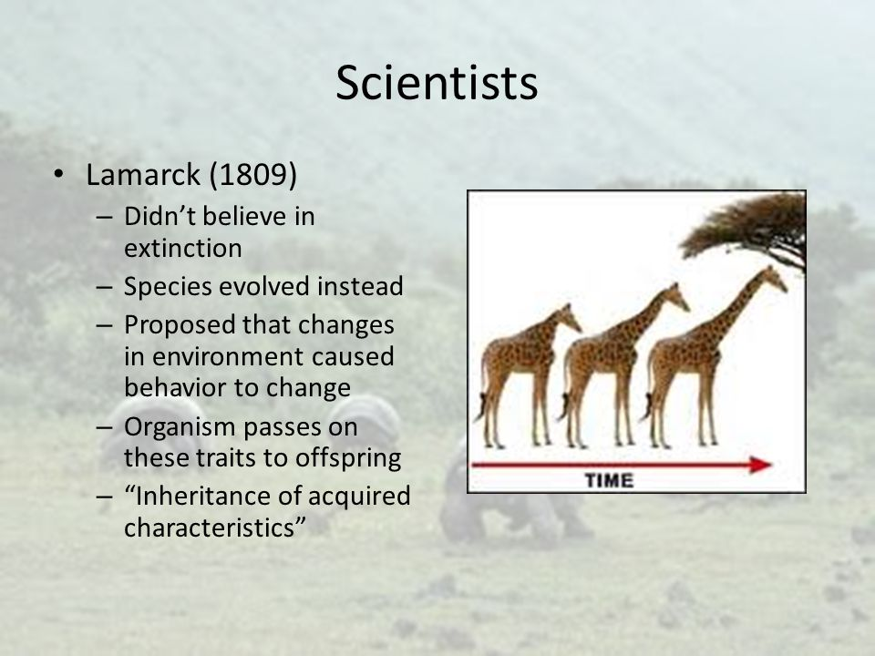 Scientists Lamarck (1809) Didn't believe in extinction
