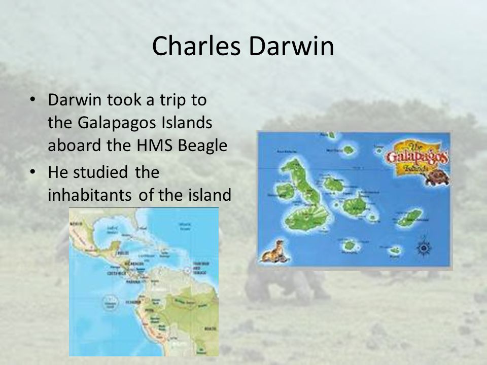 Charles Darwin Darwin took a trip to the Galapagos Islands aboard the HMS Beagle.