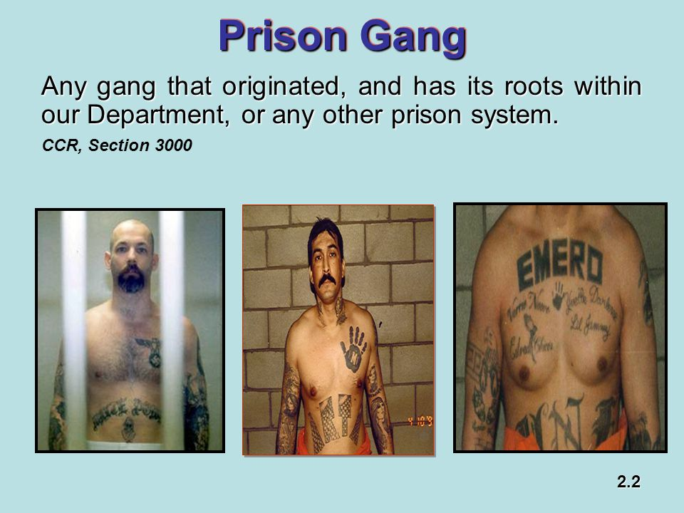 Prison Gang Any gang that originated, and has its roots within our Department, or any other prison system.