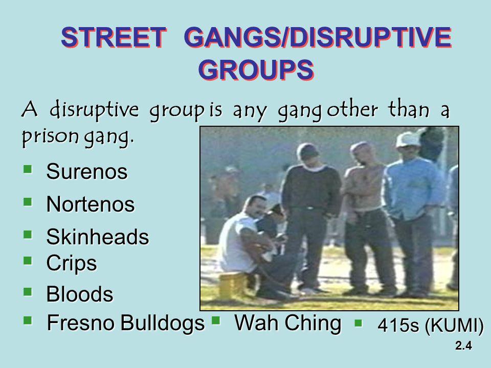 STREET GANGS/DISRUPTIVE GROUPS