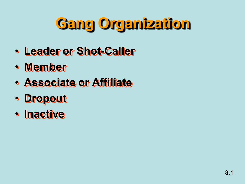Gang Organization Leader or Shot-Caller Member Associate or Affiliate