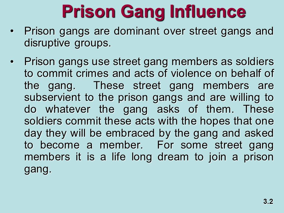 Prison Gang Influence Prison gangs are dominant over street gangs and disruptive groups.