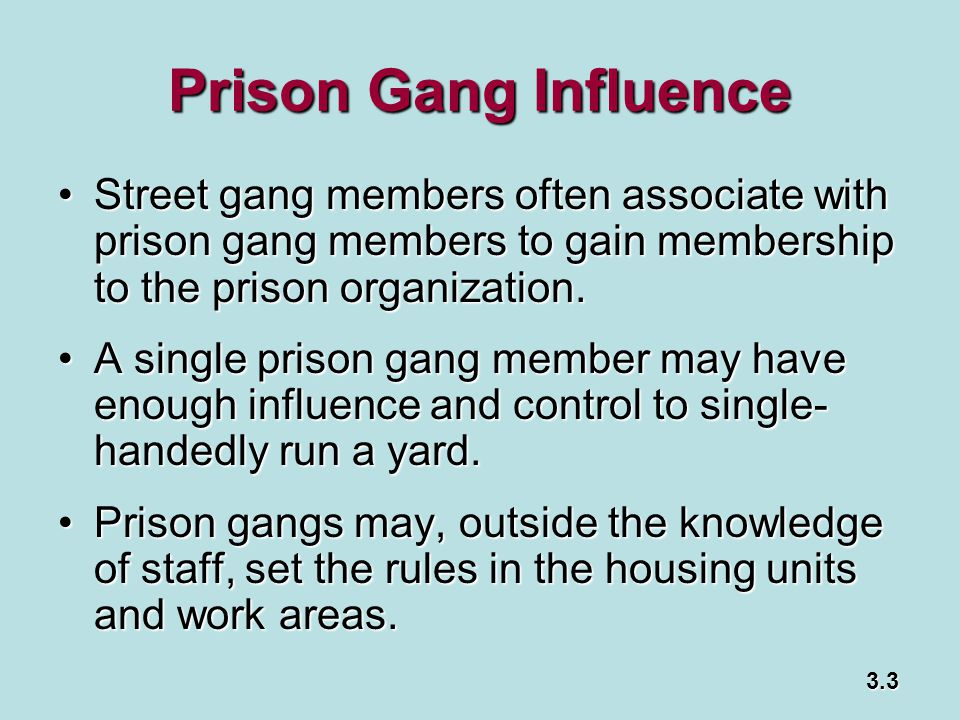 Prison Gang Influence Street gang members often associate with prison gang members to gain membership to the prison organization.