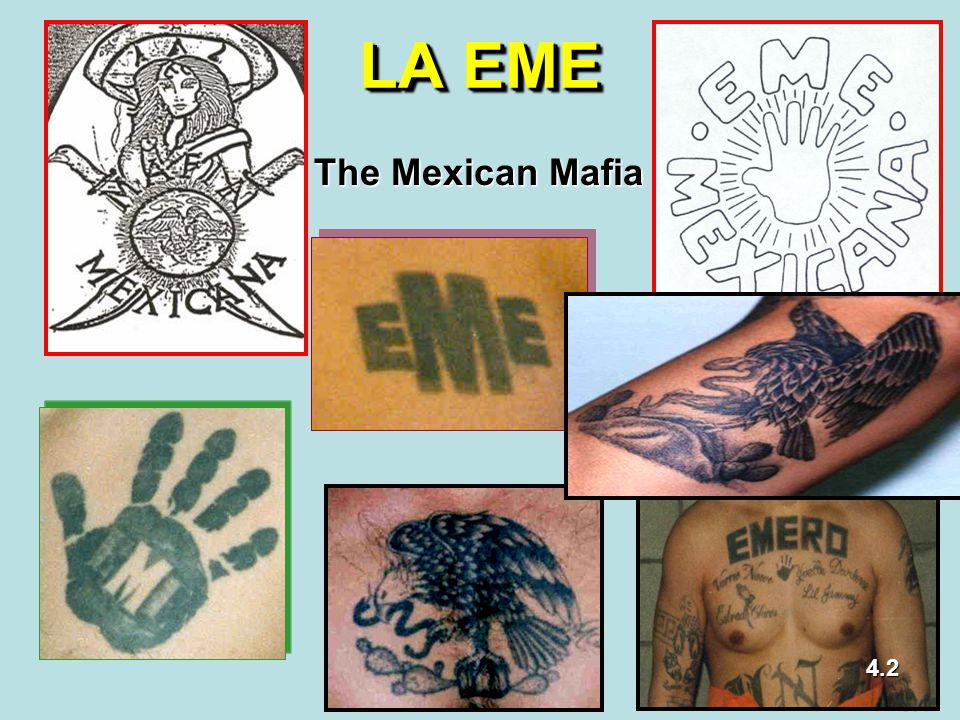 LA EME The Mexican Mafia 4.2 5.1