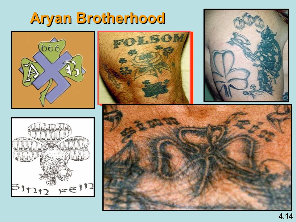 Aryan Brotherhood 4.14