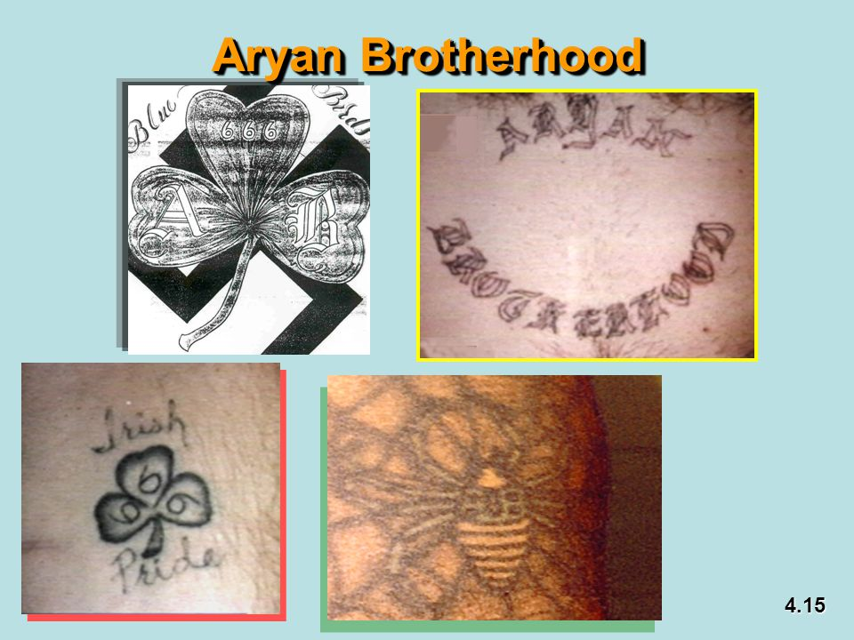 Aryan Brotherhood 4.15