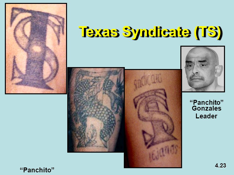 Texas Syndicate (TS) Panchito Gonzales Leader 4.23 Panchito