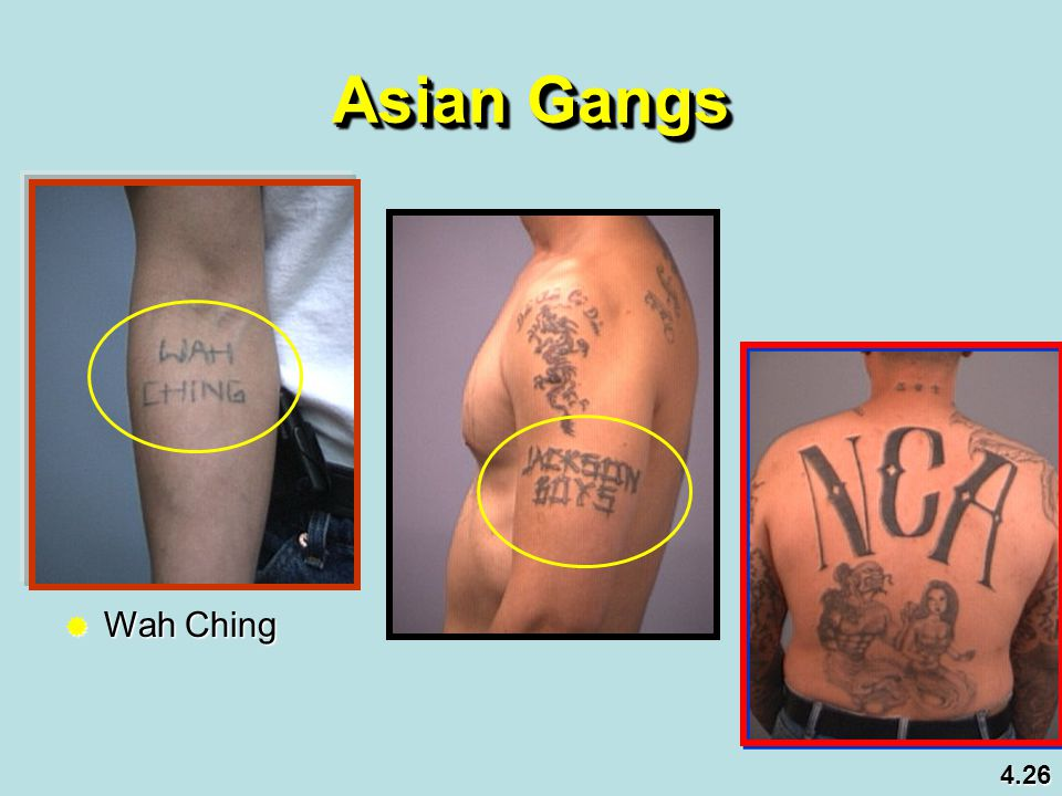 Asian Gangs Wah Ching 4.26