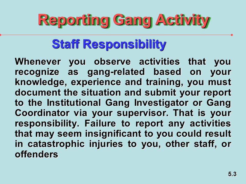 Reporting Gang Activity