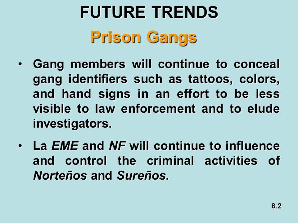 FUTURE TRENDS Prison Gangs
