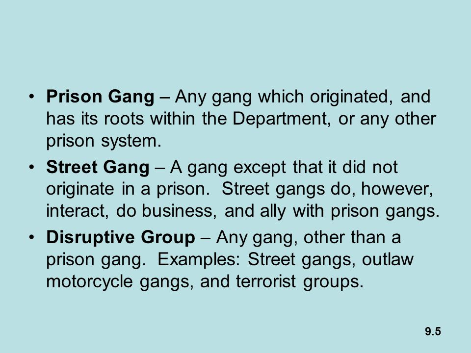 Prison Gang – Any gang which originated, and has its roots within the Department, or any other prison system.