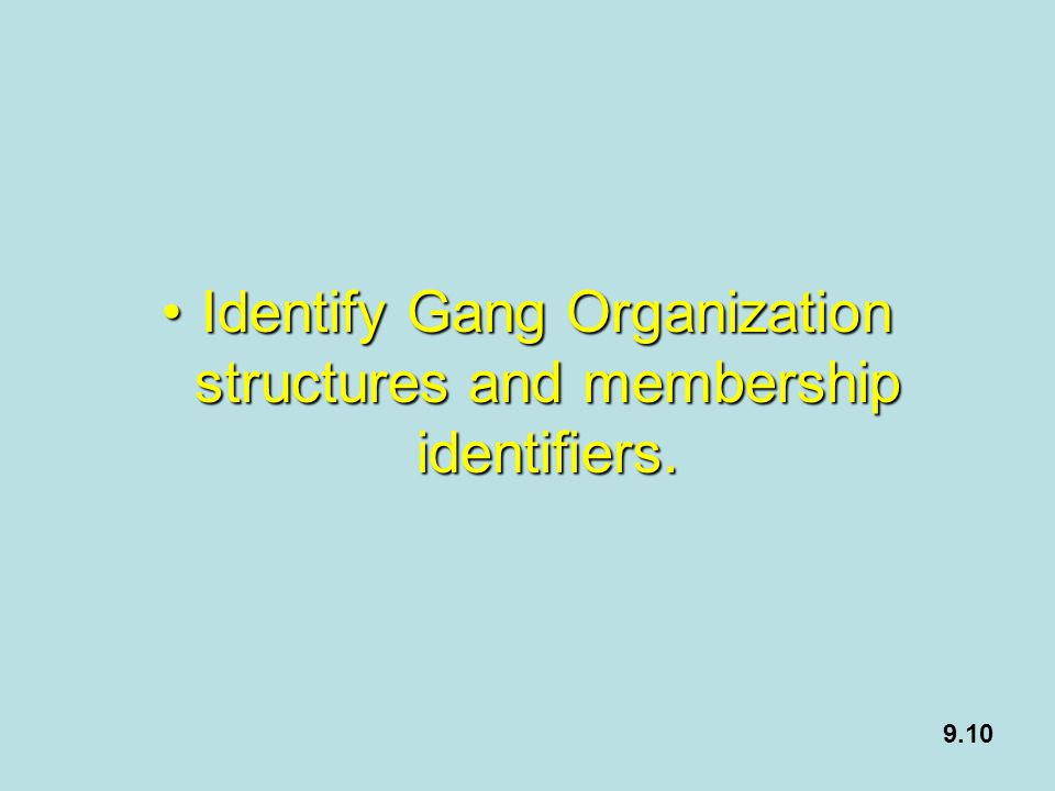 Identify Gang Organization structures and membership identifiers.