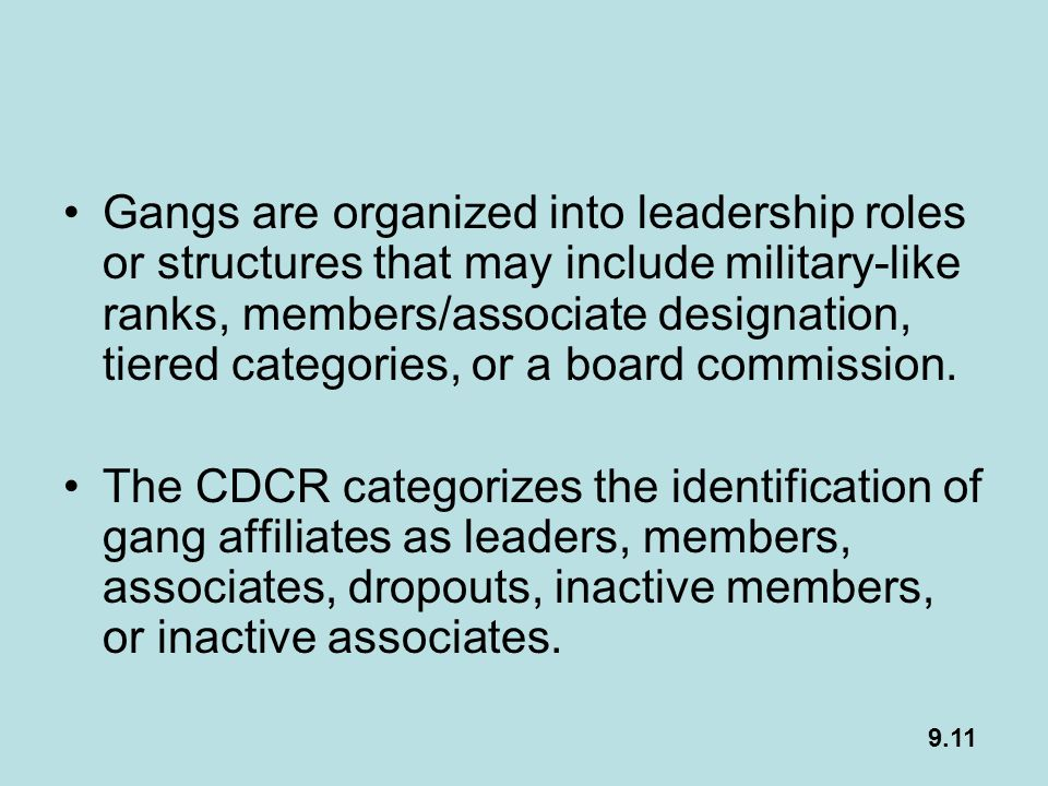 Gangs are organized into leadership roles or structures that may include military-like ranks, members/associate designation, tiered categories, or a board commission.