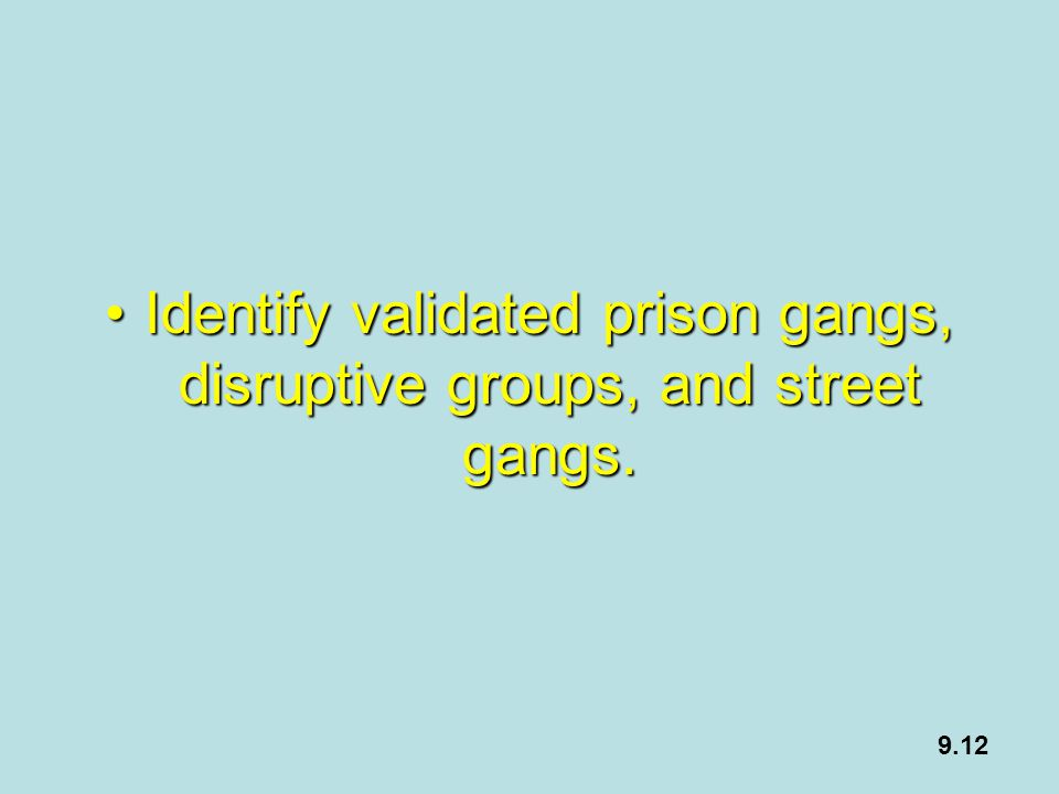Identify validated prison gangs, disruptive groups, and street gangs.