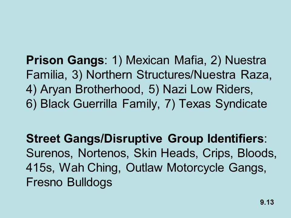 Prison Gangs: 1) Mexican Mafia, 2) Nuestra Familia, 3) Northern Structures/Nuestra Raza, 4) Aryan Brotherhood, 5) Nazi Low Riders, 6) Black Guerrilla Family, 7) Texas Syndicate