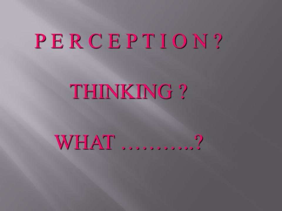P E R C E P T I O N THINKING WHAT ………..