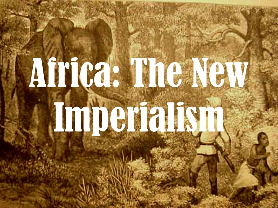 Africa: The New Imperialism
